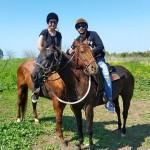 טיולי סוסים